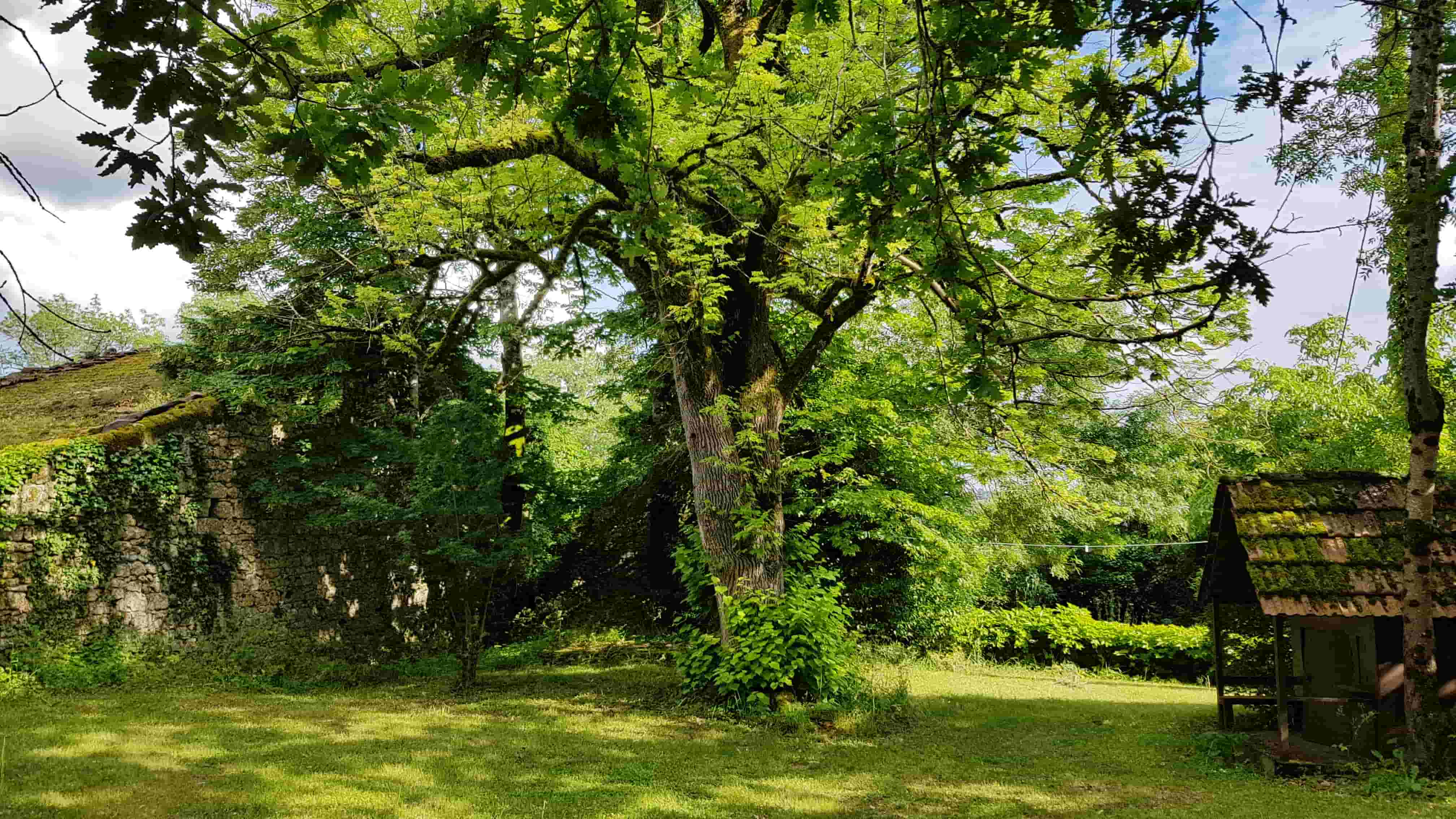 Jardins Nature